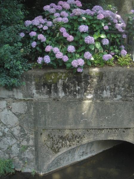 f:id:hekigyokuan:20080703001744j:image