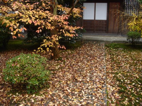 f:id:hekigyokuan:20081117223748j:image