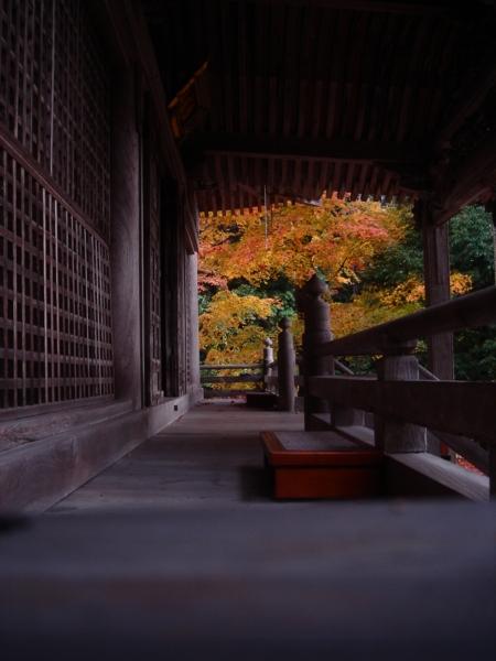 f:id:hekigyokuan:20081125224834j:image