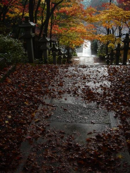f:id:hekigyokuan:20081125224835j:image