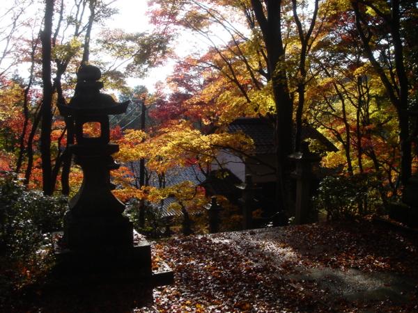 f:id:hekigyokuan:20081125224841j:image
