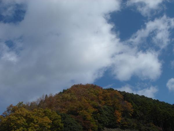 f:id:hekigyokuan:20081125224851j:image