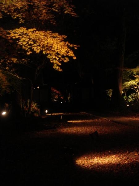 f:id:hekigyokuan:20081125224859j:image