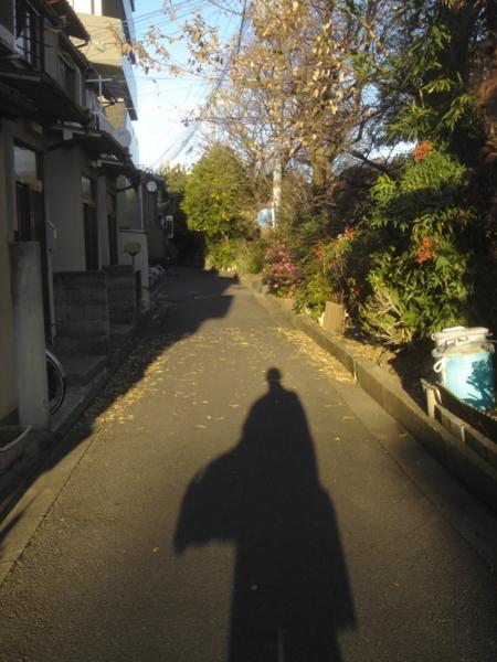 f:id:hekigyokuan:20081216185152j:image