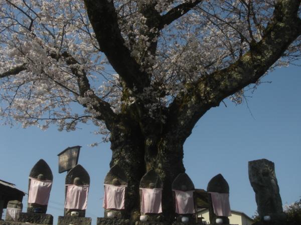 f:id:hekigyokuan:20090409142430j:image