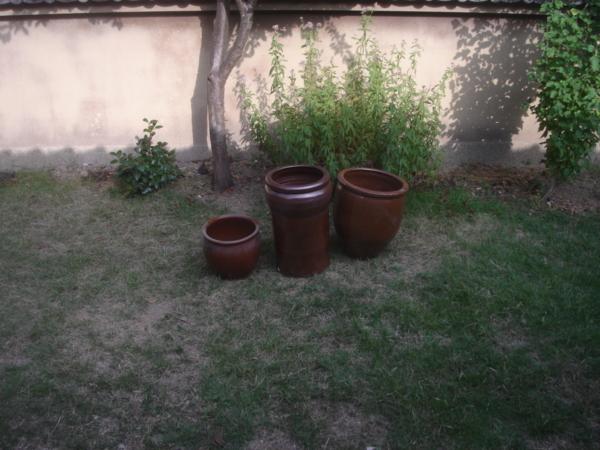 f:id:hekigyokuan:20090925153236j:image