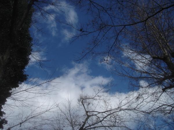 f:id:hekigyokuan:20091220142409j:image