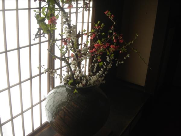 f:id:hekigyokuan:20100321143432j:image