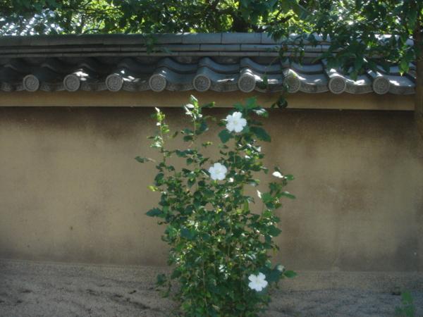 f:id:hekigyokuan:20100927090605j:image