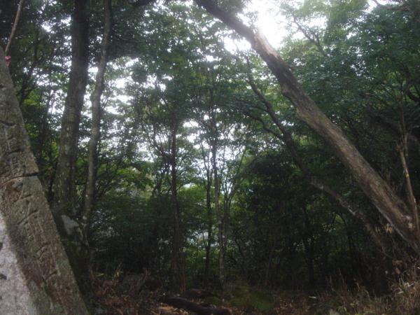 f:id:hekigyokuan:20101008150731j:image