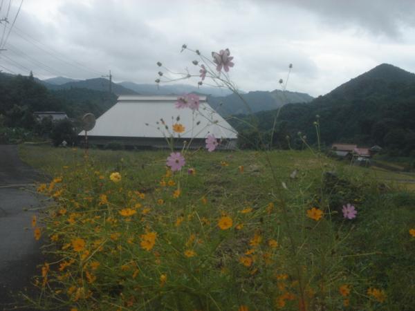 f:id:hekigyokuan:20101009121832j:image