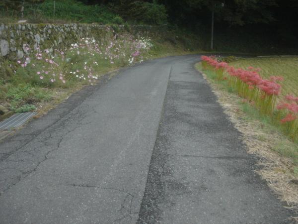 f:id:hekigyokuan:20101009122351j:image