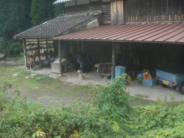 f:id:hekigyokuan:20101009123522j:image