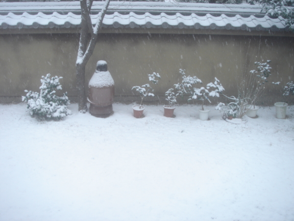 f:id:hekigyokuan:20101231094132j:image