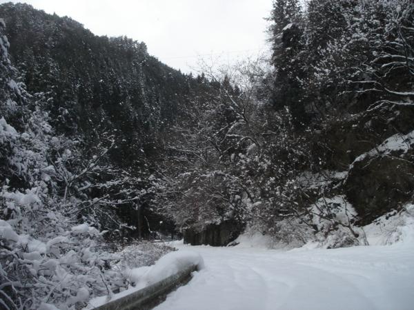 f:id:hekigyokuan:20110107141553j:image