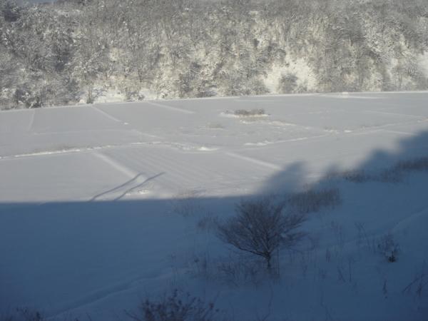 f:id:hekigyokuan:20110113085113j:image