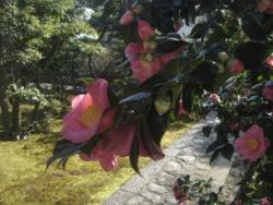 f:id:hekigyokuan:20110327083513j:image