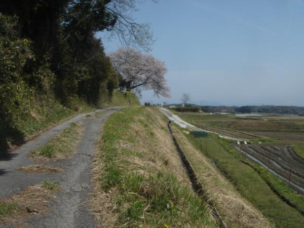 f:id:hekigyokuan:20110421115314j:image
