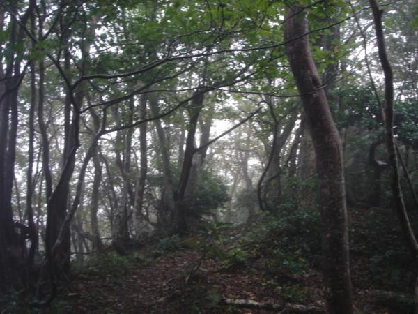 f:id:hekigyokuan:20110911063109j:image