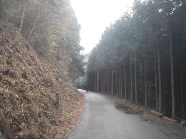 f:id:hekigyokuan:20120114160444j:image