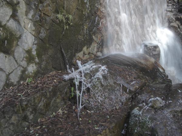 f:id:hekigyokuan:20120126160518j:image
