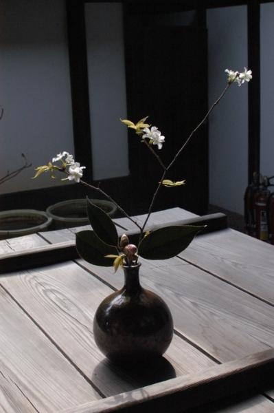 f:id:hekigyokuan:20120210132752j:image