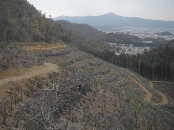 f:id:hekigyokuan:20120216163813j:image