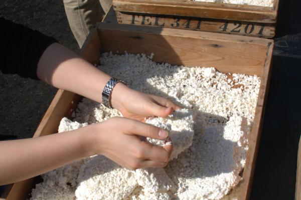 f:id:hekigyokuan:20120329140752j:image