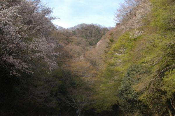 f:id:hekigyokuan:20120415164855j:image