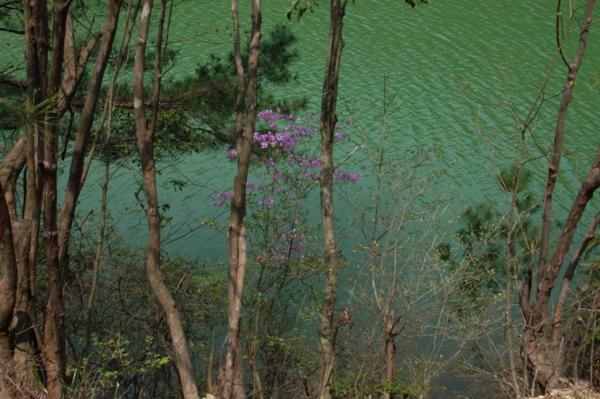 f:id:hekigyokuan:20120424101659j:image