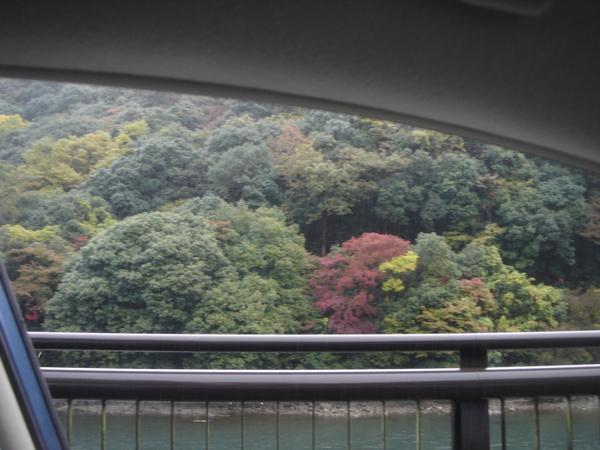 f:id:hekigyokuan:20121111122024j:image