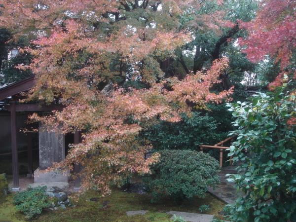 f:id:hekigyokuan:20121123082642j:image