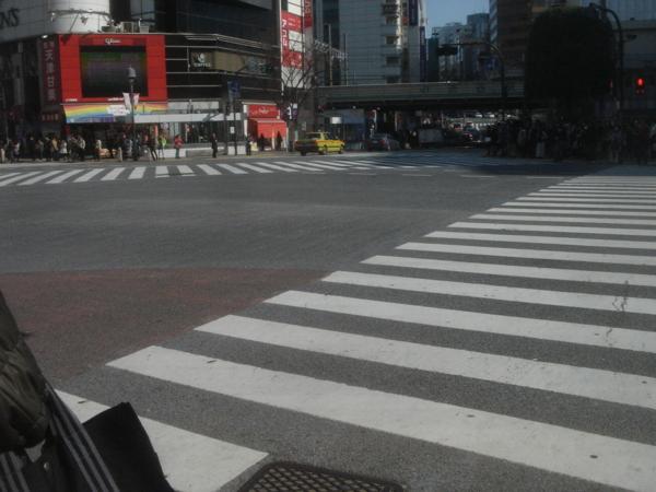 f:id:hekigyokuan:20130130114956j:image
