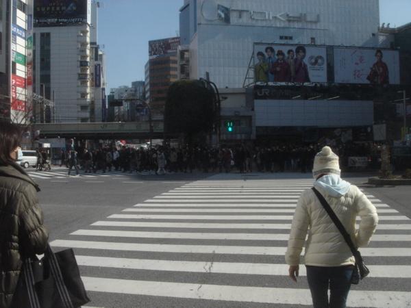 f:id:hekigyokuan:20130130115045j:image