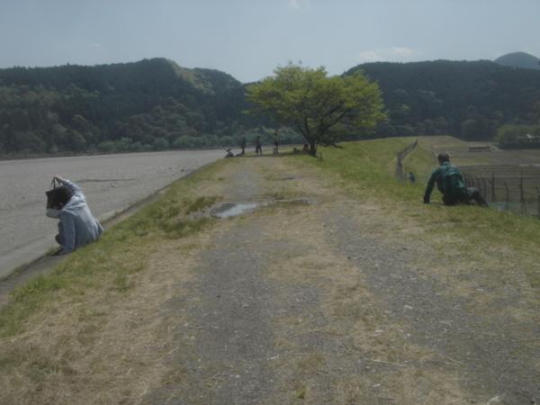 f:id:hekigyokuan:20130415124111j:image