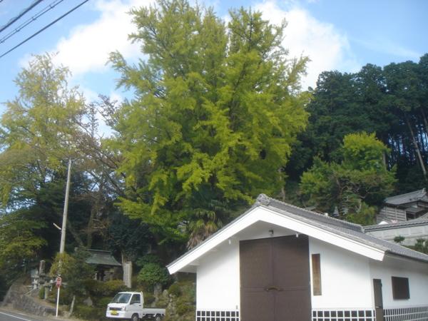 f:id:hekigyokuan:20131030102330j:image