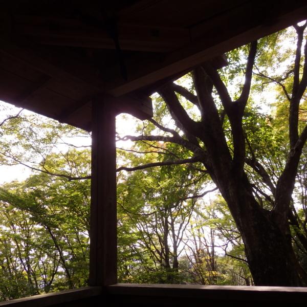 f:id:hekigyokuan:20141009101357j:image