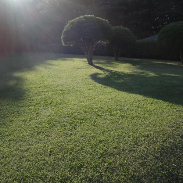 f:id:hekigyokuan:20141017152024j:image
