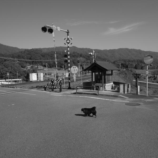 f:id:hekigyokuan:20141030095522j:image
