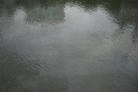 f:id:heliograph:20090620154315j:image