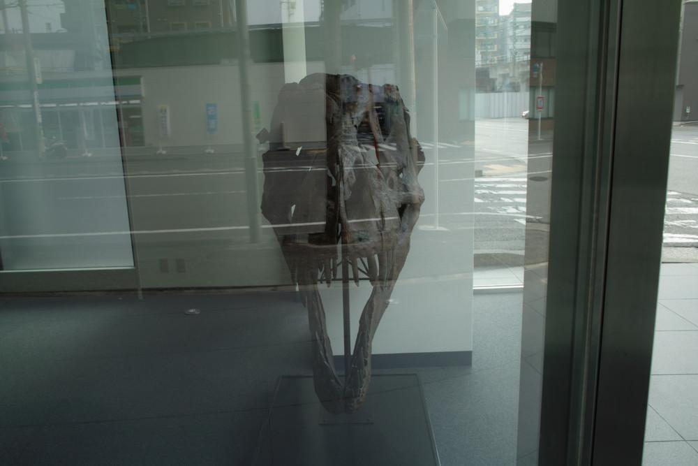 f:id:heliograph:20110206142423j:image