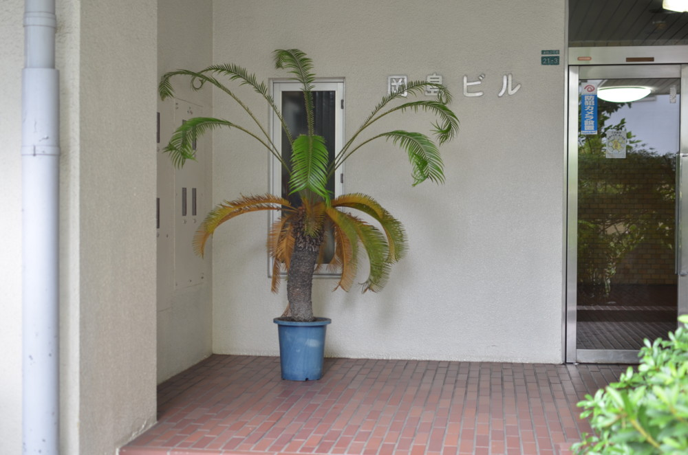f:id:heliograph:20110722165113j:image