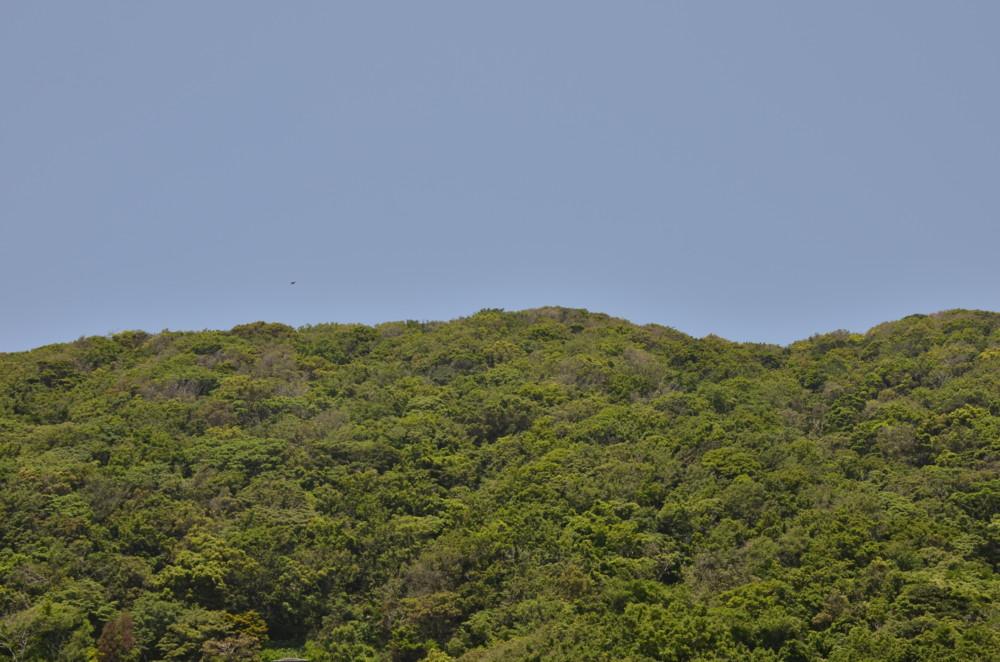 f:id:heliograph:20120527115019j:image