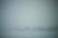 [雪]音符