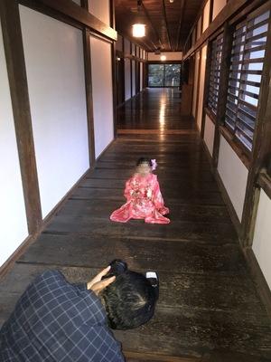 七五三はカメラマンに神社に同行してもらって撮影。