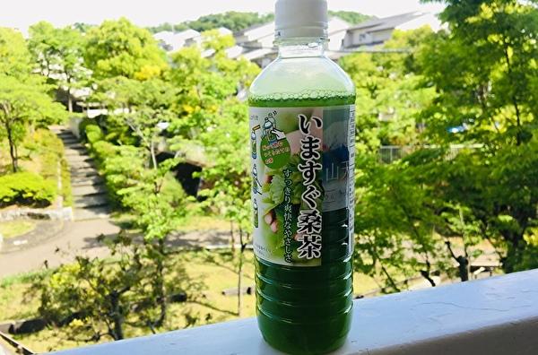 いますぐ桑茶。妊活に緑茶、日本茶は我慢しなくても、ノンカフェインのお茶である桑茶、グリーンルイボスティー、モリンガ茶が飲める。