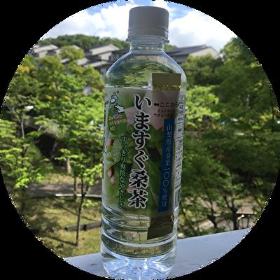 妊活お茶ランキング緑茶味の第一位は桑茶。写真は桑郷のいますぐ桑茶。