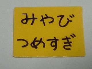 f:id:hellomiya:20060120084949j:image