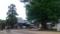 【旅01】地蔵寺の本堂。樹齢800年の大楠が迎えてくれました