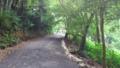 【旅03】JR中田駅から約5.5km。もう汗だくの坂道です